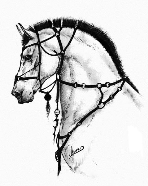 Horse Something By Aaorin On Deviantart