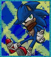 Sonic Boom :speedpaint: by Feniiku
