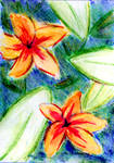 Tropical Flowers by superpower-pnut