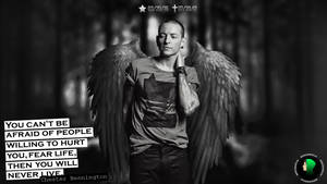 Tribute to Chester (RIP)
