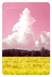 Wheat and Glucose by Rainbow-Teardrop