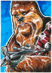 104 Chewbacca by SirGryphon