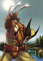 Wolverine Colors by Eddy-Swan-Colors