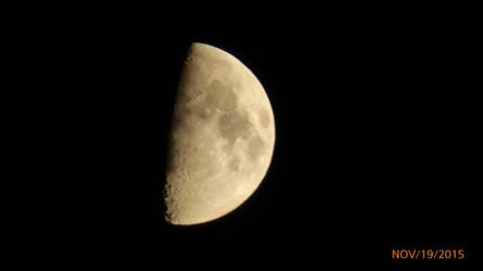 night moon by flyinggumm