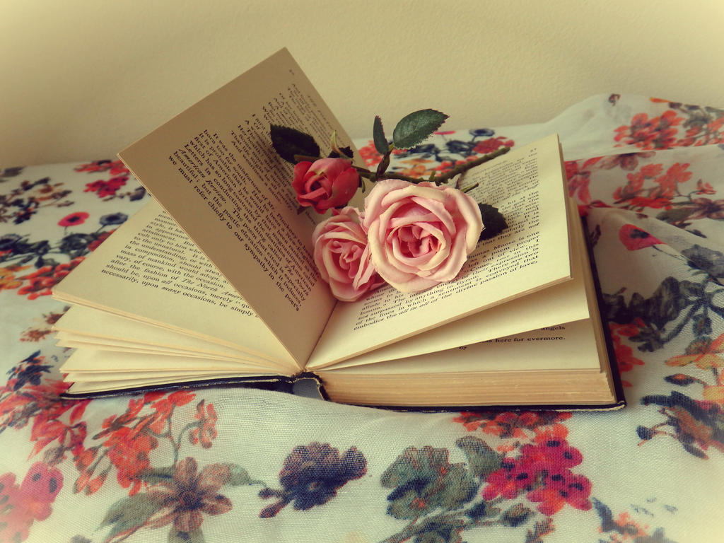 Book Dreaming by tinuvielluthien