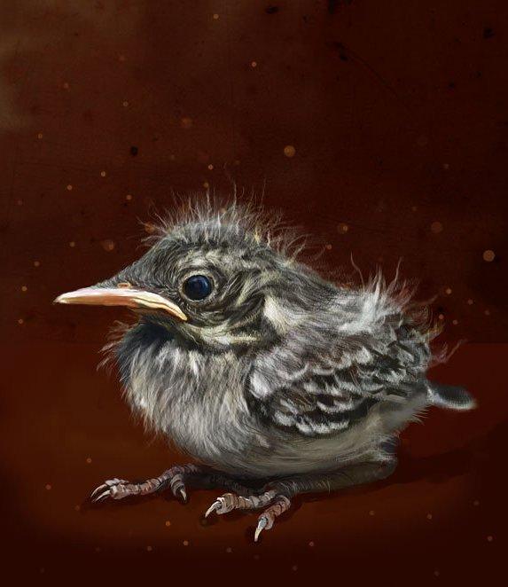 nestling by Elena-nenz