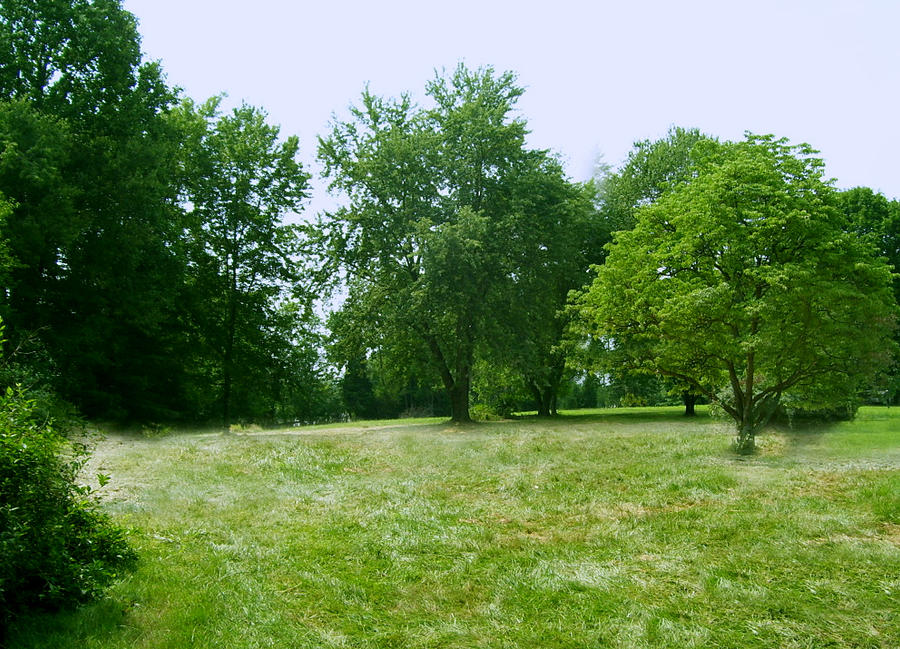 Maryland Meadow by Rhabwar-Troll-stock