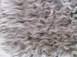 Curly Fur 3 by Rhabwar-Troll-stock