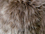Shag Faux Fur 1