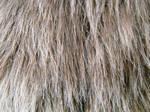 Shag Faux Fur 2