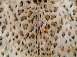 Leopard Faux Fur 2