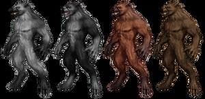 Werewolf Stock 2