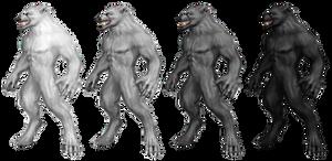 Werewolf Stock 1