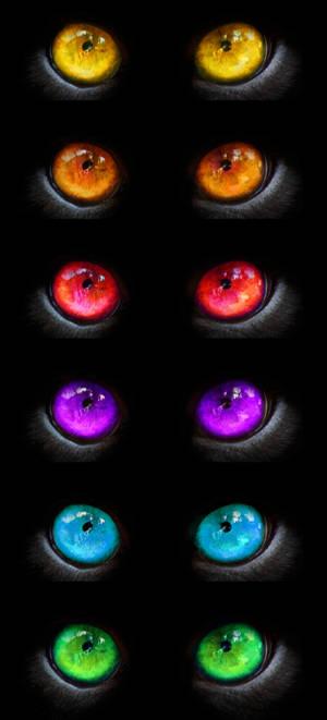 Rainbow Creature Eyes Stock