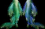 Mermaid Tails Stock 3 by Rhabwar-Troll-stock