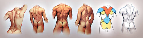 Male Back Study by Kawiku