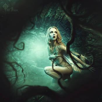 fairy dolls by LilifIlane