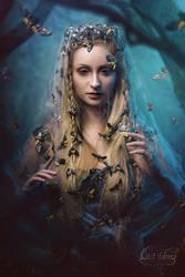 Moth by LilifIlane