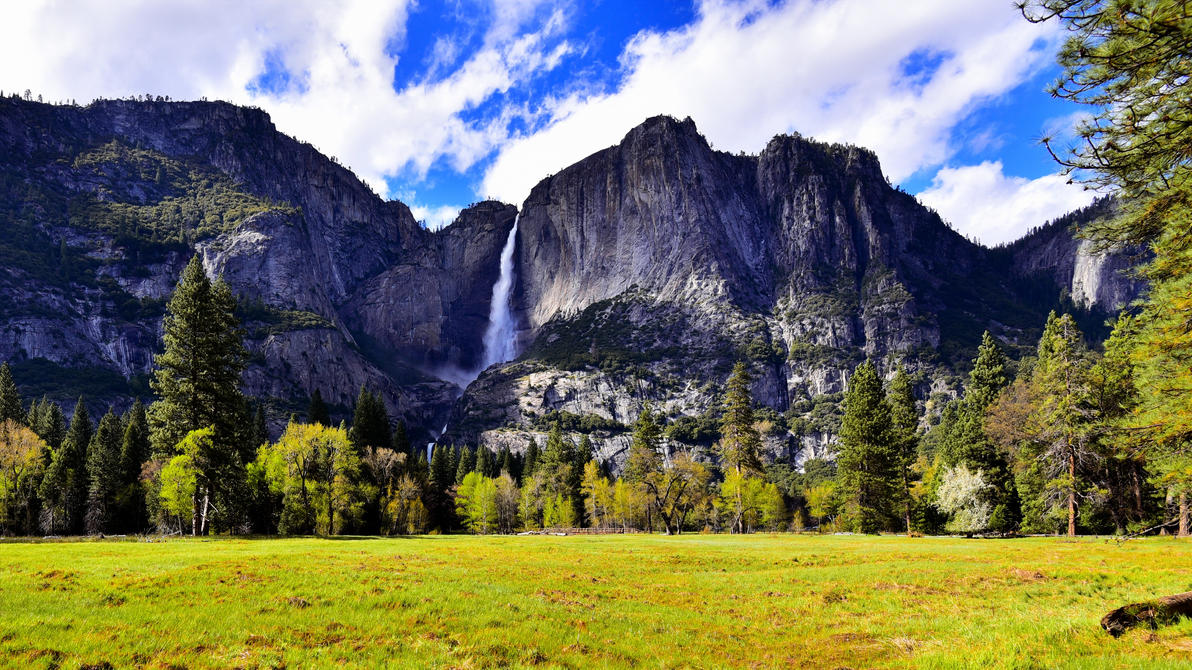Yosemite Falls from the Meadow by MotorCrazy