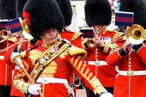 Drum Major Coldstream Guards