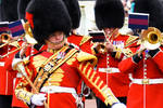 Drum Major Coldstream Guards