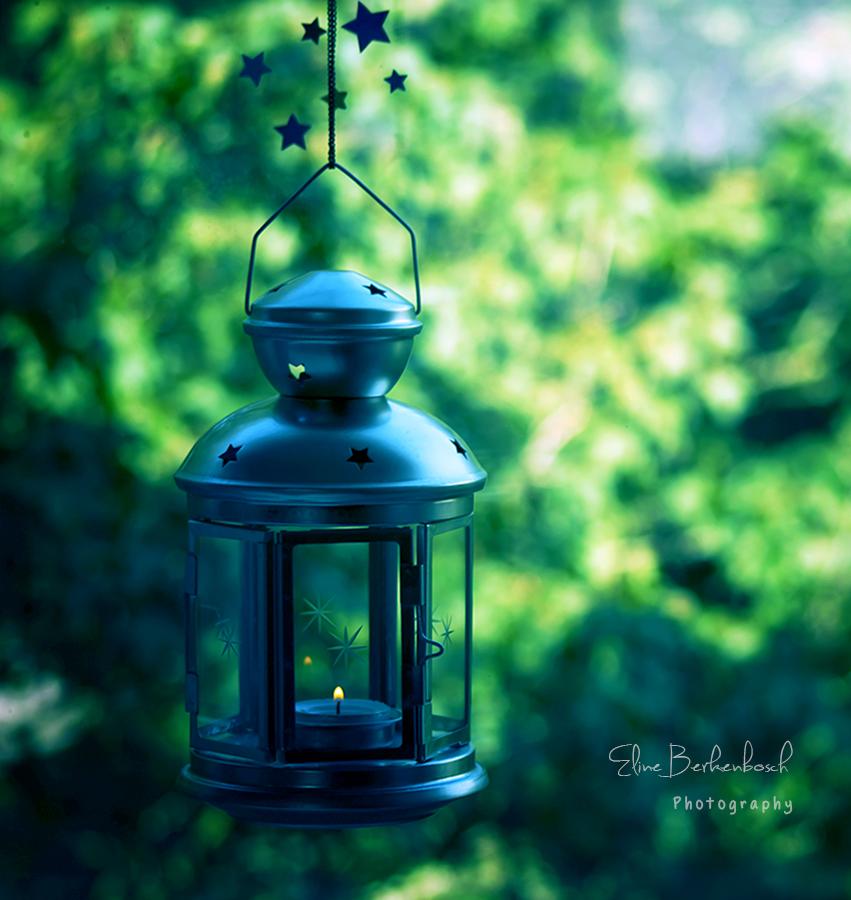 Light in the Dark by xOronar