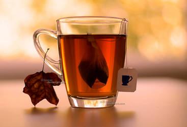 Autumn Tea by xOronar