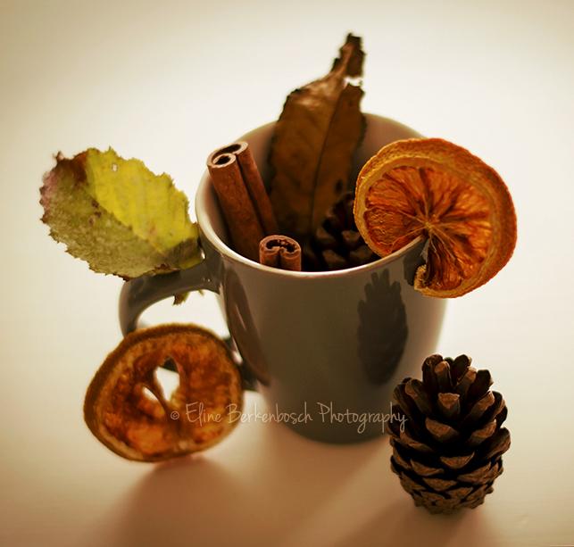 Autumn Tea II by xOronar