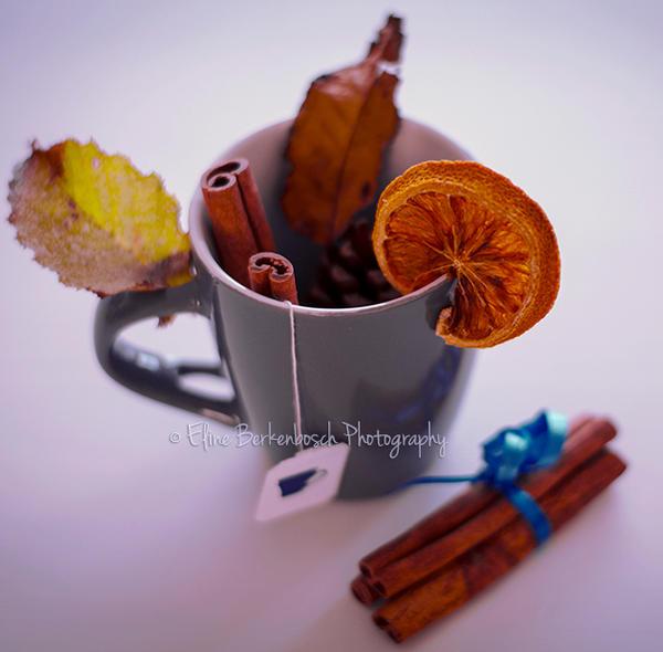 Autumn Tea III by xOronar