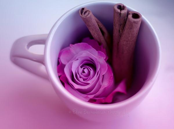 Tea Mix by xOronar
