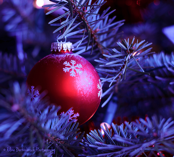 Christmas by xOronar
