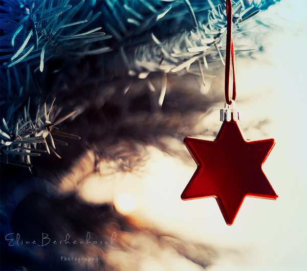 Shining Star by xOronar
