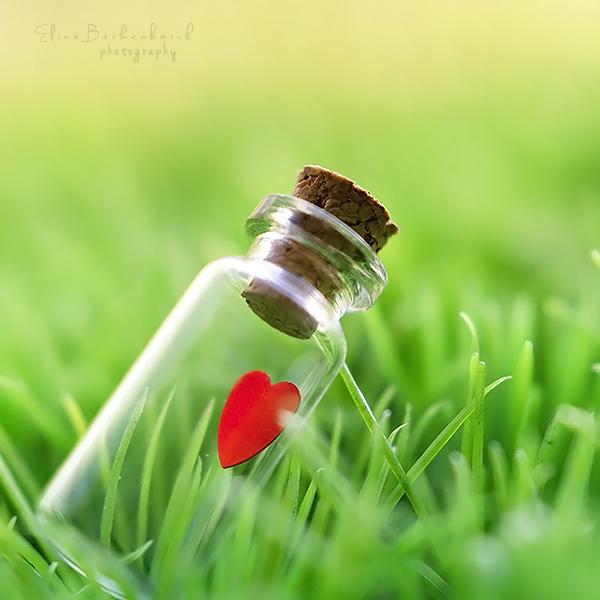 My heart belongs to you by xOronar