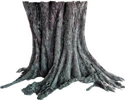 Tree trunk PNG