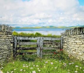 Meadow Gate Background by Nitwitbrit