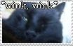 Stamp Kitten - Wink Wink by KyuubiNoYoko