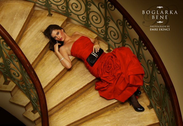 Red Rose by emreekinci