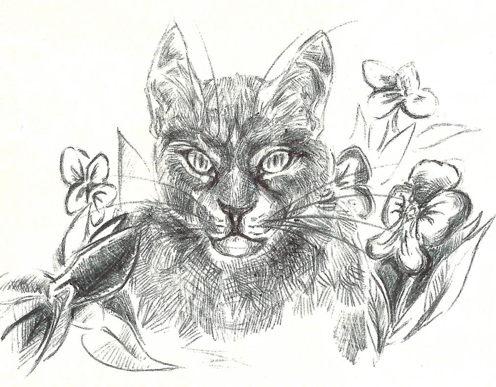 sketch by Surover