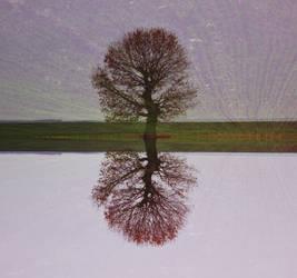 Serendipity I by AMMozart