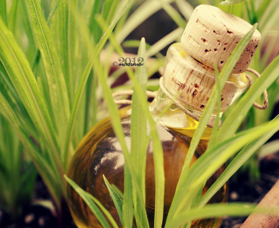 bottlemottle by nari-me