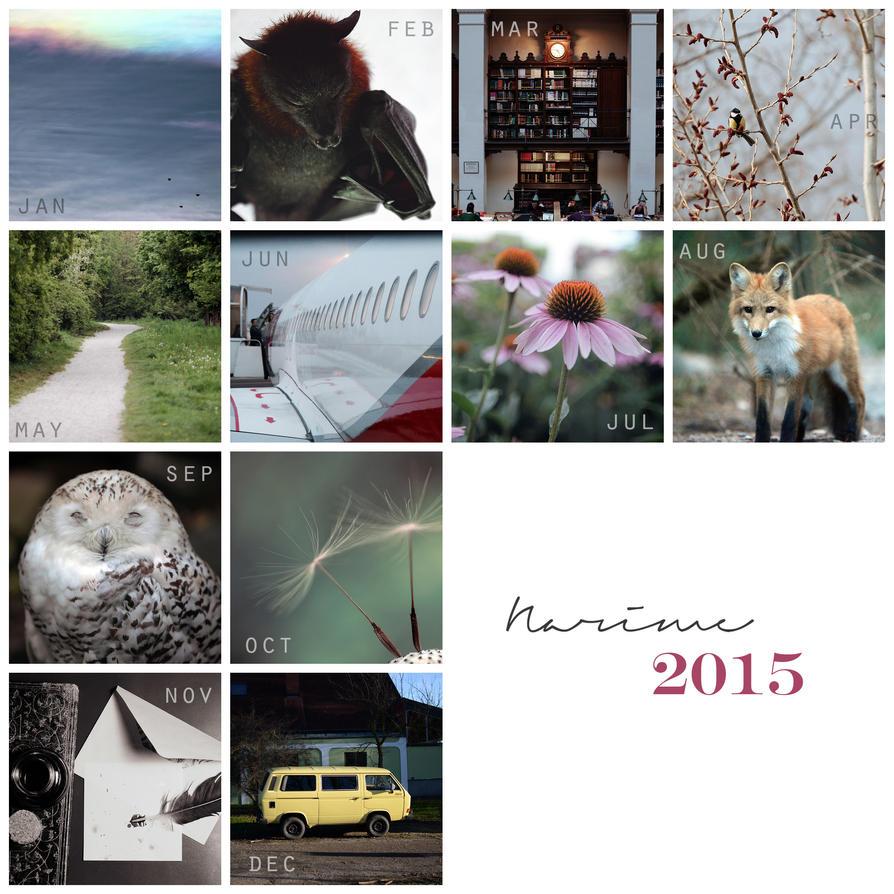 Photography Summary 2015! by nari-me