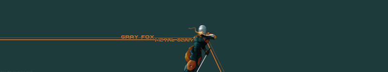 LeandroJVarini 11 2 Gray Fox