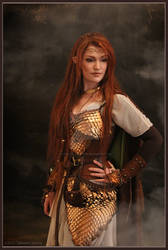 Elven warrior - Costume