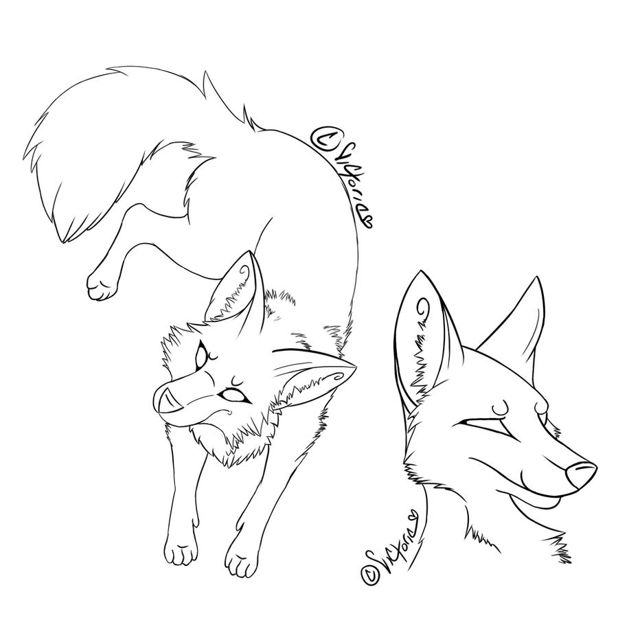 how to draw an anthro fox