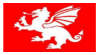English Saxon White Dragon Flag Stamp by AESD