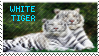 White Tiger Stamp by AESD
