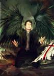 Avenging angel: Bruce