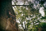 Rise of the Tomb Raider : Desert Tank top 01