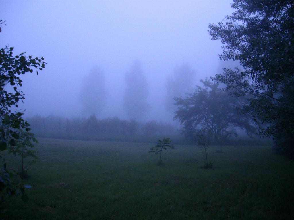 Tall Ones in the Mist by SeriahAzkath