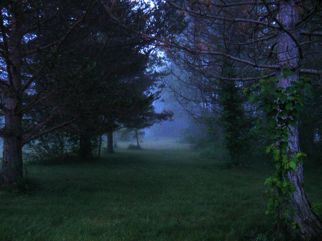 A Dark Path... by SeriahAzkath